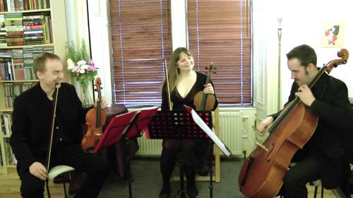 The Estival String Quartet - String Quartet & Trio