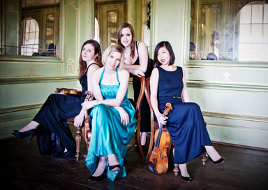 The Hearth Strings - String Quartet/Trio