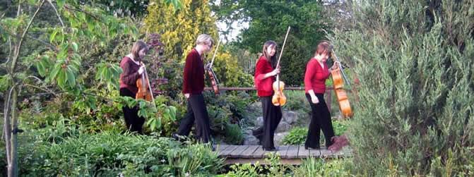 The Essex String Quartet - String Quartet