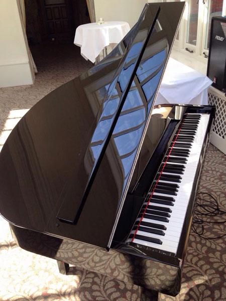 Robert - Bollywood Pianist