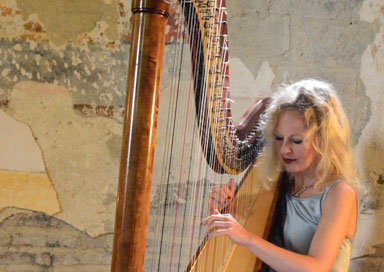 The Cornish Harpist - Harpist