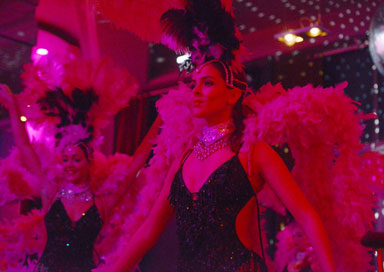 The Vegas Showgirls picture