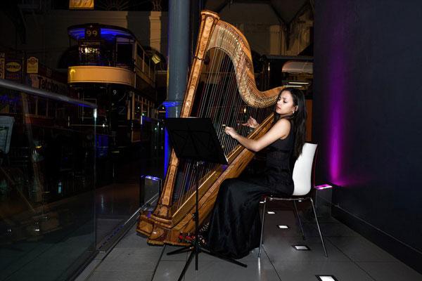 The Wedding Harpist - Harpist
