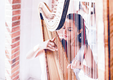 The Wedding Harpist - Harpist