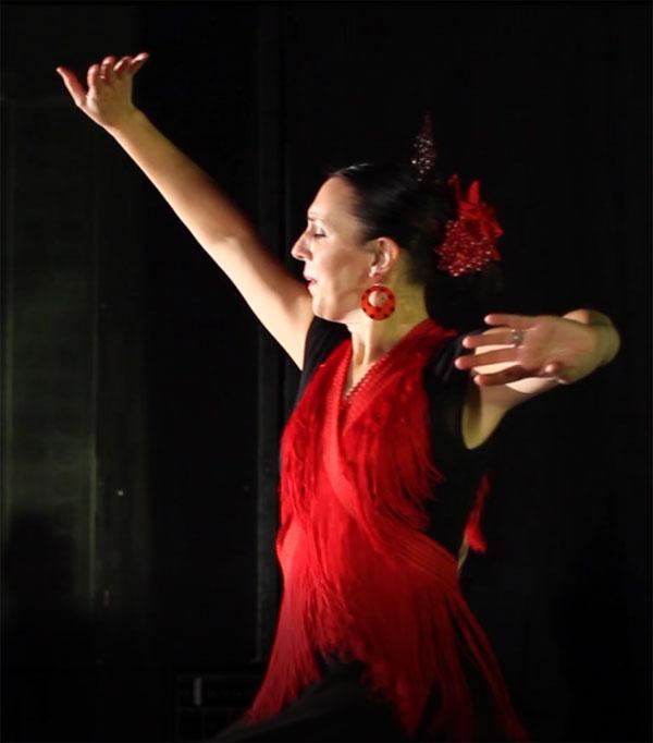 David Lawrence - Flamenco Guitarist