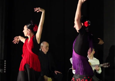 The Flamenco Dance Twins picture