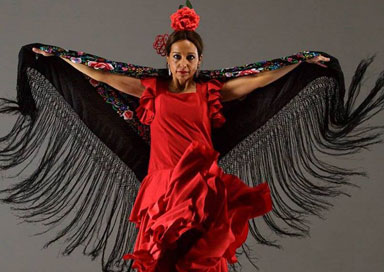 The Yorkshire Flamenco Dancer picture