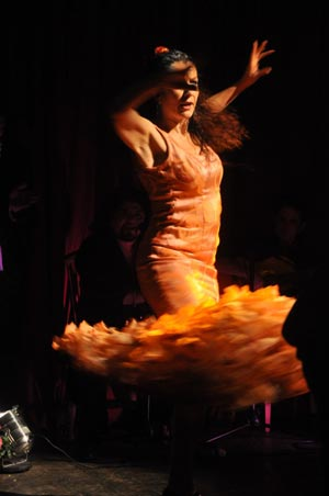 Hampshire Flamenco - Flamenco Group