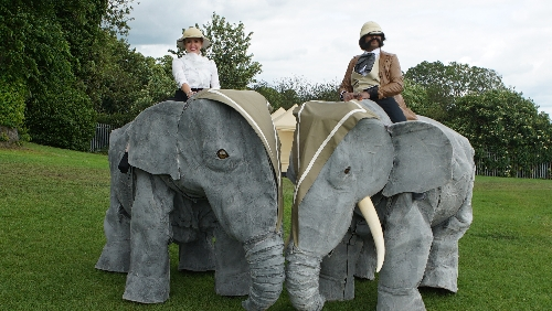 Walkabout Asian Elephants - Walkabout Act