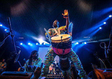 The West African Drummers - West African Entertainment