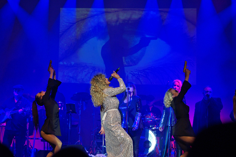 The Tina Turner Tribute - Tribute Act