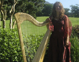 The Killarney Harpist - Harpist