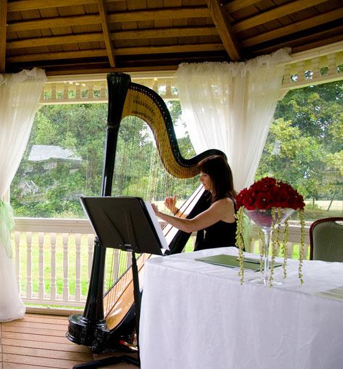 Lynnette Jones - Harpist
