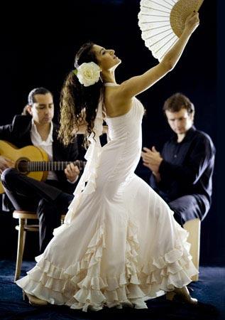 Pasión Flamenco Duo - Flamenco Dancer and Guitarist