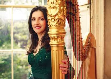 The Dublin Harpist picture
