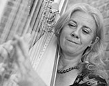 The Norfolk Wedding Harpist - Harpist