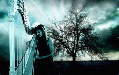 The Monmouthshire Harpist - Harpist