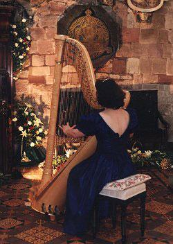 The Shropshire Harpist - Harpist