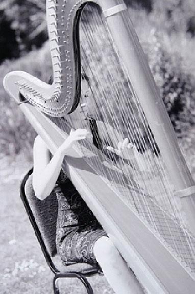 Abigail Homes - Harpist