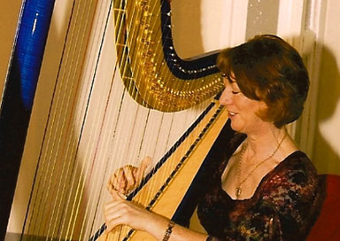 The Leinster Harpist picture