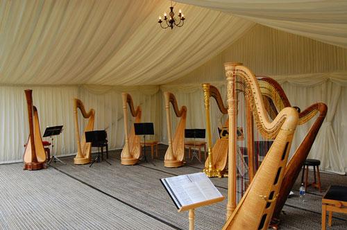 Heidi Ackroyd - Harpist