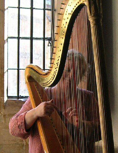 The Northamptonshire Harpist - Harpist