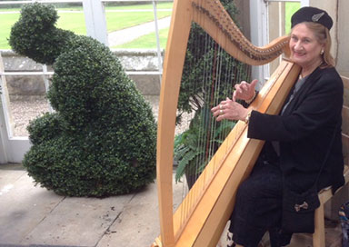 Mary O'Connor - Harpist