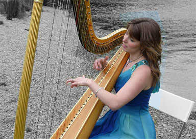 The Lake District Harpist - Harpist
