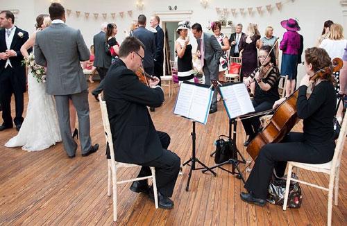 Milton Strings - String Quartet, Trio & Duo