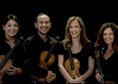 The Derby String Quartet - String Quartet & Trio