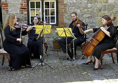 The Southampton String Ensemble - String Quartet & Trio
