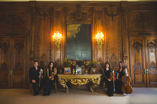 The Warwickshire String Quartet - String Quartet, Trio & Duo