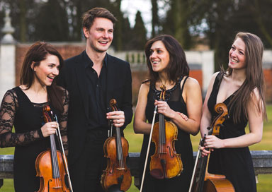 The Warwickshire String Quartet - String Quartet, Trio & Duo