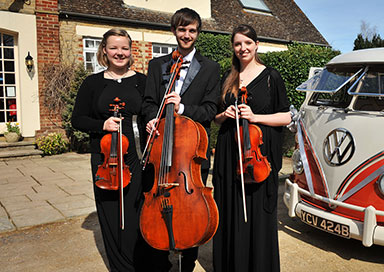 The Cotswold String Quartet - String Quartet, Trio & Duo