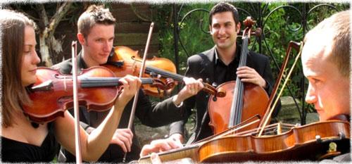Woodstock Strings - String Quartet