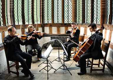 Woodstock Strings - String Quartet