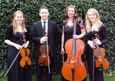 The Stanier String Ensemble - String Quartet & Trio