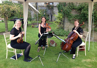 The Seasons Quartet - String Quartet & Trio