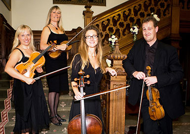 Sussex Strings - String Quartet