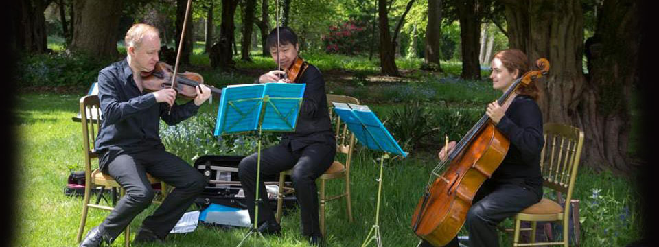 string trio hire