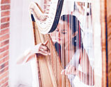 The Wedding Harpist picture