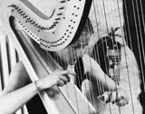 The South West Harpist picture