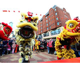 The Chinese Lion Dancers picture