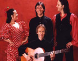 Flamenco Vision picture