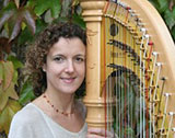 The Monmouthshire Harpist picture