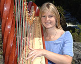 The Welsh Harpist picture