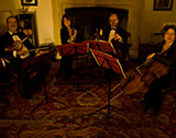 The Sulis String Quartet picture