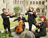 The North Wales String Quartet picture