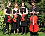The Manchester String Ensemble picture