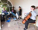 The Brighton String Quartet picture
